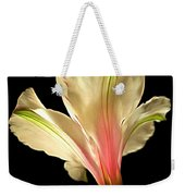 Beaming With Joy Weekender Tote Bag