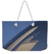 Bean Reflection Weekender Tote Bag