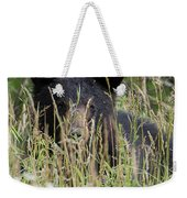 Bear In Tall Grass Weekender Tote Bag