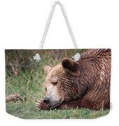 Bear Sleeping Weekender Tote Bag