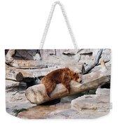 Bearly Relaxing Weekender Tote Bag