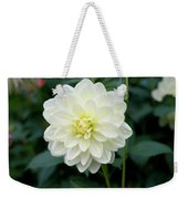 Beautiful And Fresh Dahlias In The Butchrt  Gardens,vancouver Island 3. Weekender Tote Bag