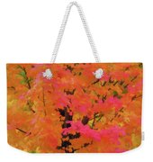Beautiful Autumn Day Weekender Tote Bag
