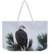 Beautiful Bald Eagle Weekender Tote Bag