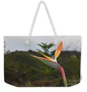 Beautiful Bird Of Paradise Flower In A Tropical Garden  Weekender Tote Bag