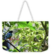 Beautiful Bird Perched In A Tree Weekender Tote Bag