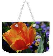 Beautiful Blooming Orange And Red Tulip Flower Blossom Weekender Tote Bag