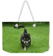 Beautiful Bold Two Month Old Alusky Puppy Dog Weekender Tote Bag