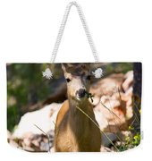 Beautiful Buck In The Pike National Forest Weekender Tote Bag