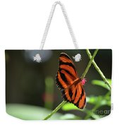 Beautiful Color Patterns To An Oak Tiger Butterfly  Weekender Tote Bag