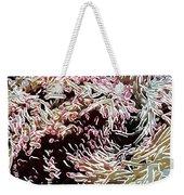 Beautiful Coral Reef  1 Weekender Tote Bag