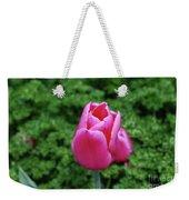Beautiful Dark Pink Tulip Flower Blossom In A Garden Weekender Tote Bag