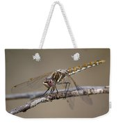 Beautiful Dragonfly Weekender Tote Bag