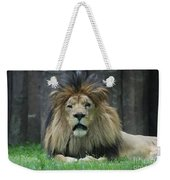 Beautiful Face Of A Male Lion With A Thick Fur Mane Weekender Tote Bag