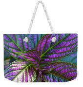Beautiful Foliage  Weekender Tote Bag