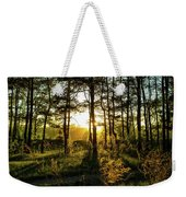 Beautiful Forest At Sunrise Weekender Tote Bag