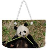 Beautiful Giant Panda Eating Bamboo From The Center Weekender Tote Bag