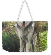 Beautiful Gray Wolf Weekender Tote Bag
