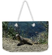 Beautiful Ground Squirrel Standing At The Edge Of The Coast Weekender Tote Bag
