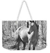 Beautiful Horse In Black And White Weekender Tote Bag