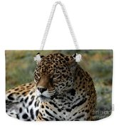 Beautiful Jaguar Portrait Weekender Tote Bag
