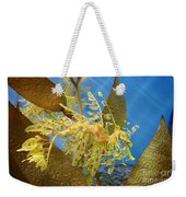 Beautiful Leafy Sea Dragon Weekender Tote Bag by Brooke Roby