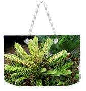 Beautiful Lime Bromeliad Weekender Tote Bag
