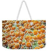 Beautiful Marine Plants 3 Weekender Tote Bag by Lanjee Chee