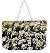Beautiful Marine Plants 4 Weekender Tote Bag