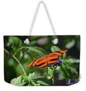 Beautiful Orange Oak Tiger Butterfly In Nature Weekender Tote Bag