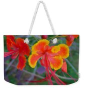 Beautiful Peacock Flower 5 Weekender Tote Bag