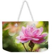 Beautiful Pink Rose Blooming In Garden With Natural Bokeh Weekender Tote Bag