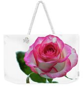 Beautiful Pink Rose With Leaves On A Wite Background. Weekender Tote Bag