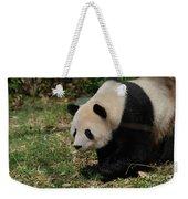 Beautiful Profile Of A Giant Panda Bear Ambling Along Weekender Tote Bag