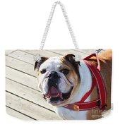 Beautiful Pug. Weekender Tote Bag