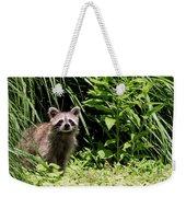Beautiful Racoon Weekender Tote Bag