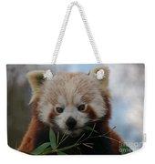 Beautiful Red Panda Weekender Tote Bag