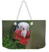Beautiful Ruffled Green Feathers On A Conure Weekender Tote Bag