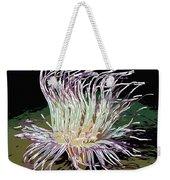 Beautiful Sea Anemone 1 Weekender Tote Bag