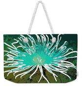 Beautiful Sea Anemone 2 Weekender Tote Bag