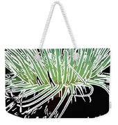 Beautiful Sea Anemone 3 Weekender Tote Bag by Lanjee Chee