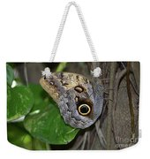 Beautiful Shot Of A Brown Morpho Butterfly Resting  Weekender Tote Bag
