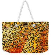 Beautiful Soft Coral 4 Weekender Tote Bag by Lanjee Chee
