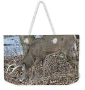 Beautiful Stag Weekender Tote Bag