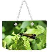 Beautiful Wings Weekender Tote Bag