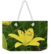 Beautiful Yellow Lily In A Garden During Spring Weekender Tote Bag