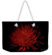 Beauty 2 Weekender Tote Bag