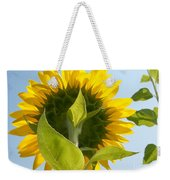 Beauty However You Look At It Weekender Tote Bag