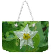 Beauty In All Sizes Weekender Tote Bag
