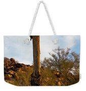 Beauty In The Breakdown Weekender Tote Bag